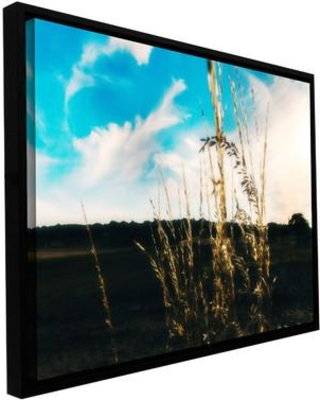 """ArtWall Field by Revolver Ocelot Framed Photographic Print on Wrapped Canvas, Canvas & Fabric in Brown/Blue/Black, Size 32"""" H x 48"""" W 