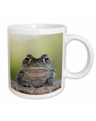 "East Urban Home Sonoran Desert Toad Bufo Alvarius Coffee Mug W000868807 Color: White Size: 4.65"" H x 4.9"" W x 3.33"" D"