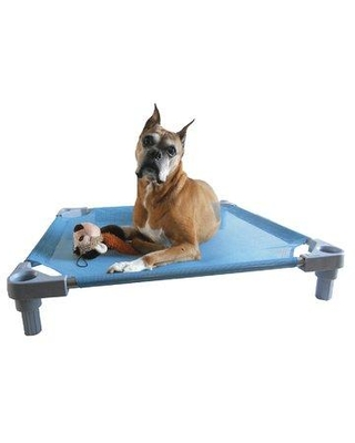 "Tucker Murphy™ Pet Hellman Elevated Dog Cot in Blue, Size Large (34"" W x 34"" D x 6"" H) 
