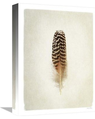 """East Urban Home 'Feather I' Photographic Print on Canvas ESUN0785 Size: 24"""" H x 18"""" W"""