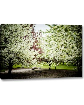 """Winston Porter 'Crabapple in Spring I' Photographic Print on Wrapped Canvas BI155707 Size: 21"""" H x 32"""" W x 1.5"""" D"""