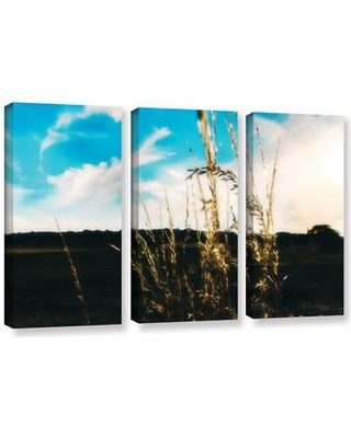 """ArtWall 'Field' by Revolver Ocelot 3 Piece Photographic Print on Wrapped Canvas Set, Canvas & Fabric in Brown/Blue/Black, Size Large 33""""-40"""" Wayfair"""