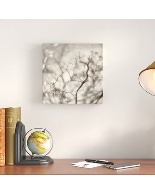 """'Twig1' Photographic Print on Canvas Alcott Hill Size: 11"""" H x 11"""" W"""
