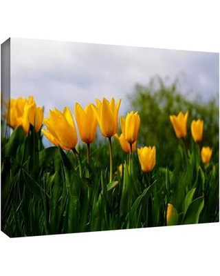 """ArtWall 'Tulips' by Lindsey Janich Photographic Print on Wrapped Canvas 0jan054-12x18-w Size: 8"""" H 12"""" W"""
