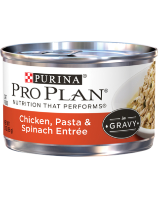 (24 Pack) Purina Pro Plan Gravy Wet Cat Food, Chicken, Pasta & Spinach Entree, 3 oz. Pull-Top Cans