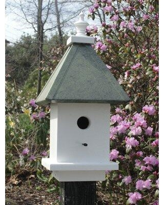 Wooden Expression Birdhouses Manor 19 in x 9 in x 9 in Birdhouse DL43 Color: Faux Patina