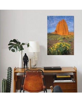 """East Urban Home 'Sunflower Cluster and Temple of the Sun Capitol Reef National Park Utah I' Graphic Art Print on Canvas ESBH8034 Size: 40"""" H x 26"""" W x 0.75"""" D"""