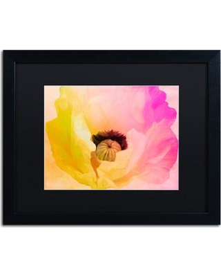 "Trademark Fine Art 'Poppy Gradient II' by Color Bakery Framed Painting Print ALI4333-B1 Size: 16"" H x 20"" W x 0.5"" D Mat Color: Black"