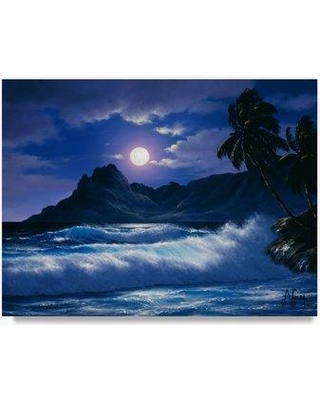 """Trademark Fine Art 'Coast Line 16' Oil Painting Print on Wrapped Canvas ALI20293-C Size: 14"""" H x 19"""" W"""