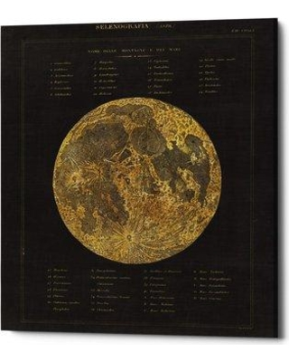 """Williston Forge 'Astronomical Chart I' Framed Acrylic Painting Print on Canvas BF147244 Size: 16"""" H x 12"""" W x 0.75"""" D"""