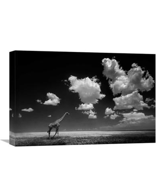 Global Gallery 'Gone With The Clouds' by Alberto Ghizzi Panizza Photographic Print on Wrapped Canvas GCS-462012-22-142