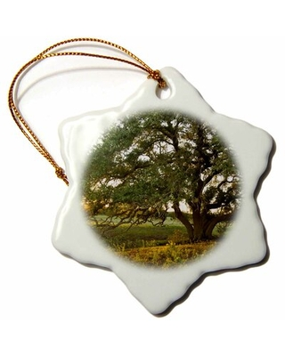 Live Oak Tree at Sunset, Central Texas, USA Snowflake Holiday Shaped Ornament