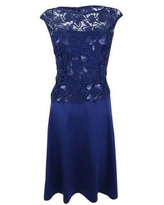 Adrianna Papell Women's Lace Fit & Flare Dress (6, Night Navy)