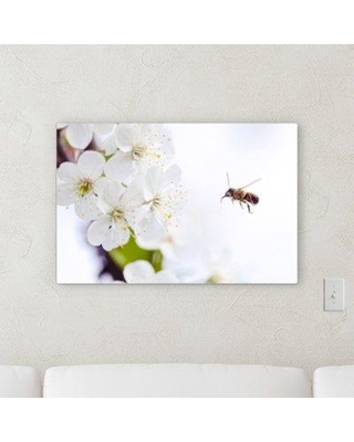 """Winston Porter 'The Little Animals (71)' Photographic Print on Canvas BF120544 Size: 20"""" H x 30"""" W x 2"""" D"""