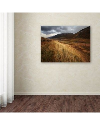 """Trademark Art 'Autumnal' Photographic Print on Wrapped Canvas 1X03323-C Size: 24"""" H x 32"""" W"""