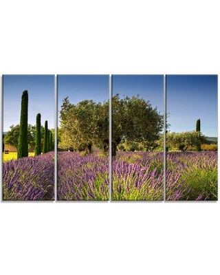 Design Art 'Beautiful Lavender and Olive Trees' 4 Piece Photographic Print on Wrapped Canvas Set PT12362-271