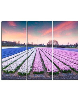Design Art Colorful Hyacinth Flowers at Sunrise - 3 Piece Graphic Art on Wrapped Canvas Set PT7234-3P