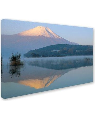 """Trademark Art 'Fog' Photographic Print on Wrapped Canvas ALI18870-C Size: 16"""" H x 24"""" W"""