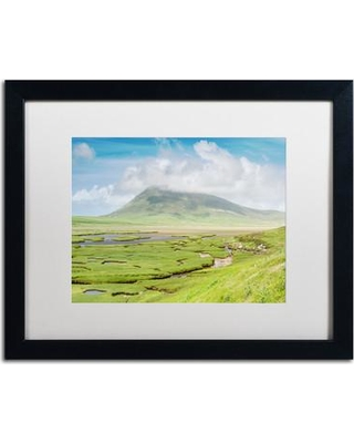 """Trademark Art 'The Harris Saltings' by Michael Blanchette Framed Photographic Print ALI3961-B1 Matte Color: White Size: 16"""" H x 20"""" W x 0.5"""" D"""