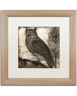 """Trademark Fine Art 'Owl 2' by Color Bakery Framed Graphic Art ALI4215-T1 Mat Color: White Size: 16"""" H x 16"""" W x 0.5"""" D"""