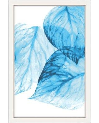 Darby Home Co 'Aqua Leaves II' Framed Graphic Art Print on Canvas DBHM5904