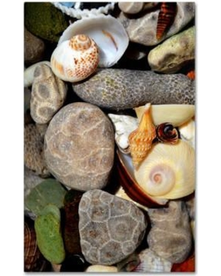 """Trademark Art """"PetoskeyStones ll"""" by Michelle Calkins Photographic Print on Wrapped Canvas MC0203-C Size: 24"""" H x 16"""" W x 2"""" D"""
