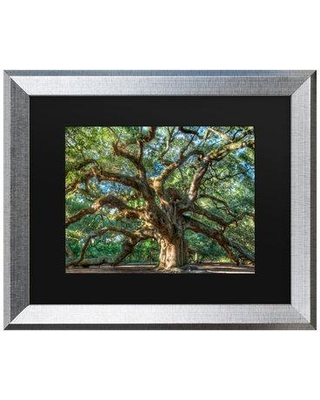 """Charlton Home 'Angel Oak Charleston' Framed Photographic Print on Canvas W001165184 Size: 16"""" H x 20"""" W x 0.5"""" D Format: Silver"""