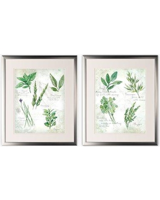 Gracie Oaks 'Fresh Herb' 2 Piece Framed Graphic Art Print Set GRCS1049 Format: Silver Framed
