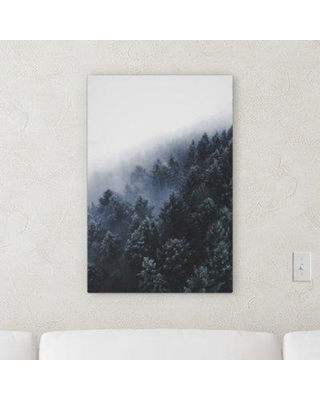 "Millwood Pines 'Wooden Things (30)' Photographic Print on Canvas BI120842 Size: 40"" H x 30"" W x 2"" D"