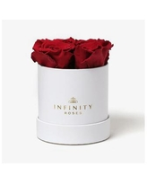 Round Box of 4 Red Real Roses Preserved To Last Over A Year - Red