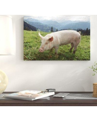"""East Urban Home Germany 'Pig on A Grassy Lawn' Photographic Print on Wrapped Canvas NNAI3818 Size: 16"""" H x 24"""" W"""
