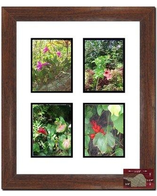 """Darby Home Co Betterton 4 Opening Picture Frame BI052348 Picture Size: 3"""" x 5"""""""