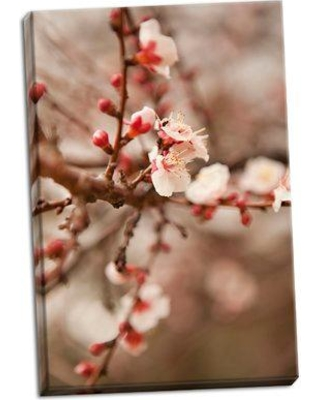 Bloomsbury Market 'In Bloom XI' Photographic Print on Wrapped Canvas BI053246