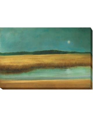 Artistic Home Gallery 'Harvest Moon' by Caroline Gold Framed Painting Print Wrapped Canvas, Canvas & Fabric in Brown/Green | Wayfair 2436814CG
