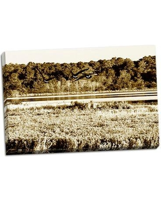 Millwood Pines 'Assateague Island 4' Photographic Print on Wrapped Canvas BI053123