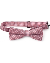 Tea Collection Appaman Bow Tie