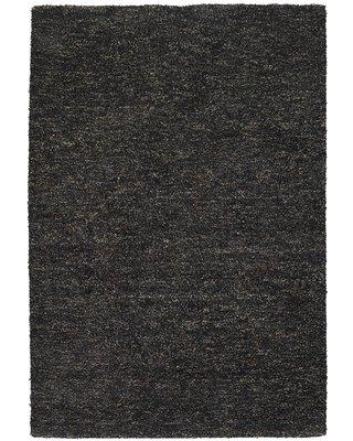 """17 Stories Rania Black Area Rug STSS7573 Rug Size: Rectangle 5' x 7'6"""""""