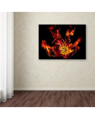 """Winston Porter 'Flaming Tulip' Graphic Art Print on Wrapped Canvas WNPO5408 Size: 24"""" H x 32"""" W"""