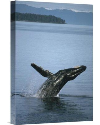 "East Urban Home 'Humpback Whale Breaching in Summer Feeding Grounds Southeast Alaska' Photographic Print EAUB4683 Size: 18"" H x 12"" W Format: Wrapped Canvas"