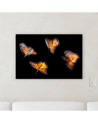 """Winston Porter 'The Little Animals (55)' Photographic Print on Canvas BF120536 Size: 30"""" H x 40"""" W x 2"""" D"""