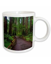 Discover Deals On Abdon Coffee Mug East Urban Home Theme Path Among Redwoods In Muir Woods Nm