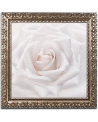 "House of Hampton 'Soft White Rose' Framed Photographic Print HOHP9886 Size: 16"" H x 16"" W x 0.5"" D"
