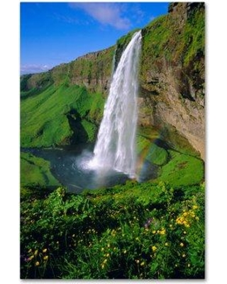 """Trademark Fine Art 'Waterfalls' Graphic Art Print on Wrapped Canvas, Canvas & Fabric in Brown, Size 19"""" H x 12"""" W 