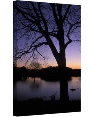 "ArtWall 'Texas Sunset on the Lake' by Kathy Yates Photographic Print on Wrapped Canvas Kyates59-12x18-w Size: 32"" H x 48"" W"