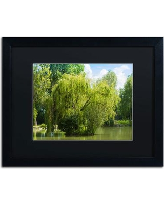 """Trademark Art 'Pond and Paintography' by Philippe Sainte-Laudy Framed Photographic Print PSL0319-B1 Matte Color: Black Size: 16"""" H x 20"""" W"""