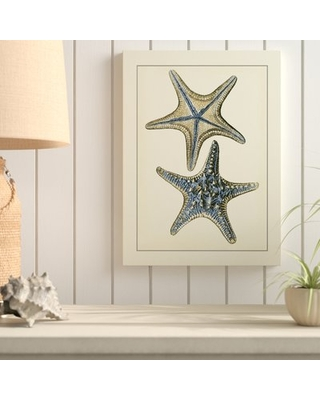 """'Antique Blue Starfish II' Graphic Art Print on Wrapped Canvas Highland Dunes Size: 24"""" H x 18"""" W x 2"""" D"""