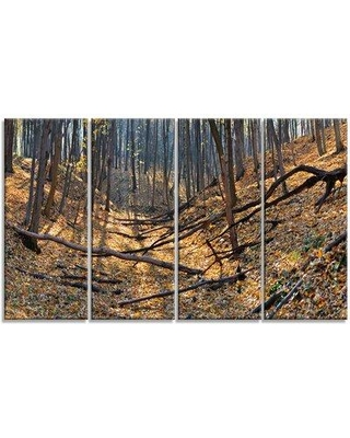 Design Art 'Thick Autumn Forest Panorama' Photographic Print Multi-Piece Image on Canvas PT15240-271