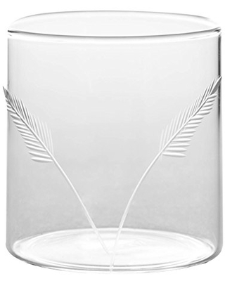 Great Deal On Borosil Vision Deco Fern Tumbler Set Of 6 Clear Lightweight Durable Drinkware Drinnkware 10 Ounce Cups