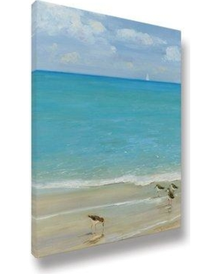 Highland Dunes 'Sandpiper Birds on Shore 01' Acrylic Painting Print on Wrapped Canvas BI133254