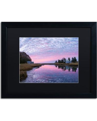 "Trademark Art Rosy Billow' Framed Photographic Print on Canvas ALI3850-B1 Size: 16"" H x 20"" W x 0.5"" D Matte Color: Black"